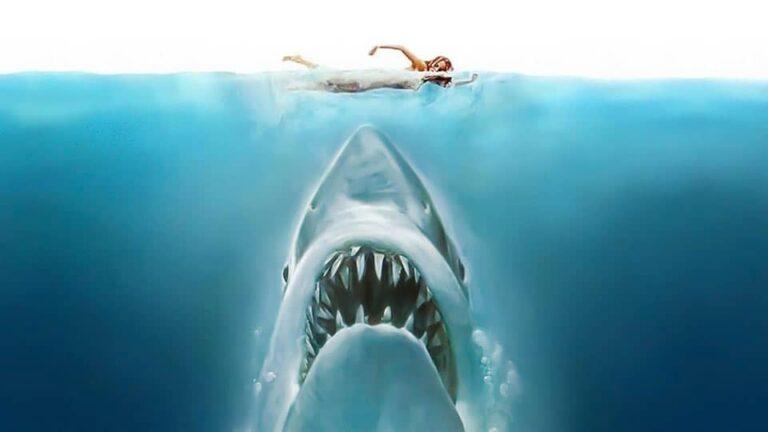 Jaws (1975) • Screenplay